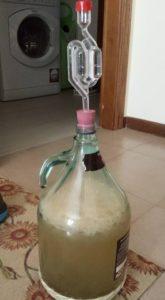 Aloe Ale, Idromele, fermentazione
